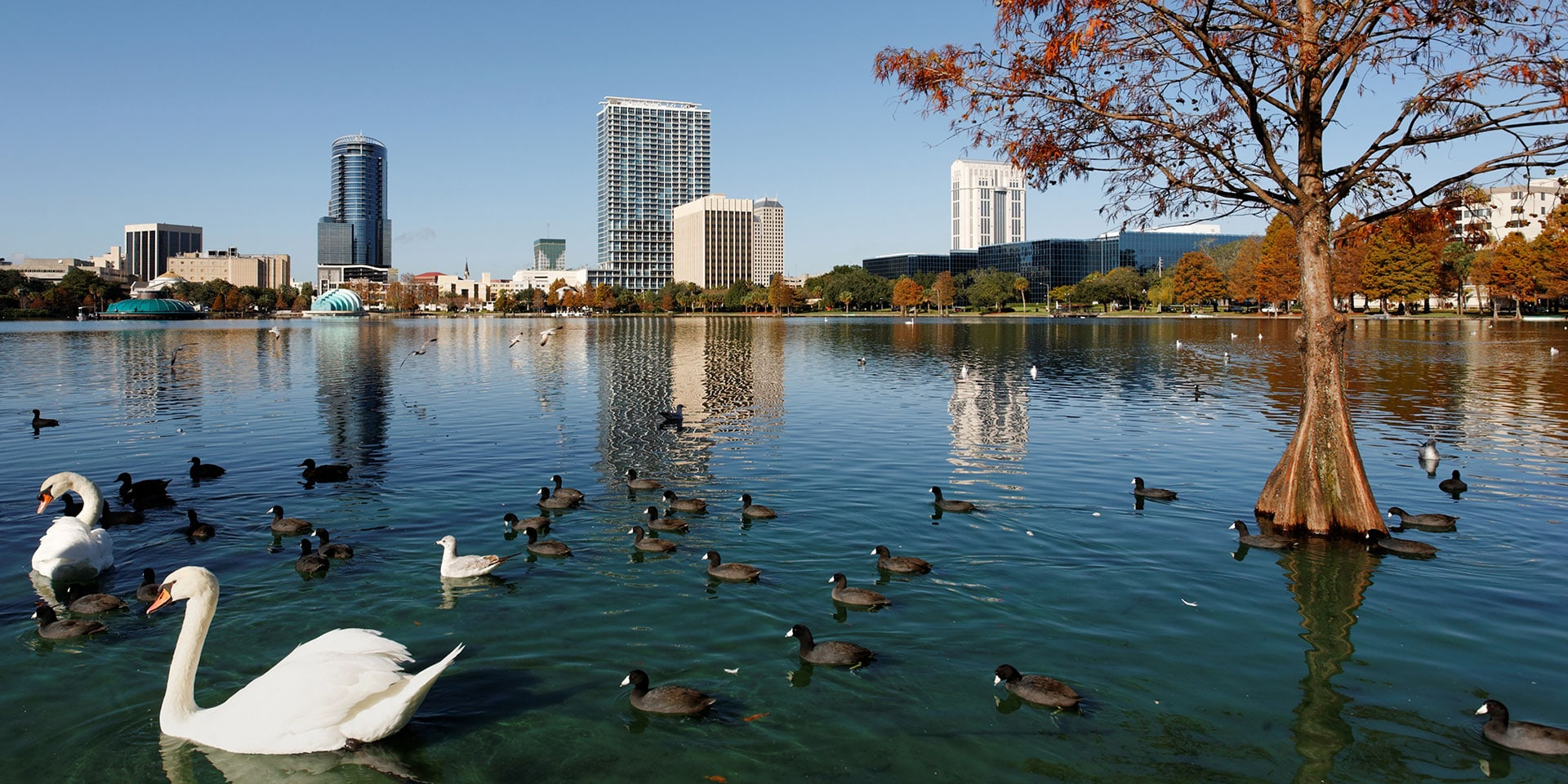 Lake Eola in Orlando.