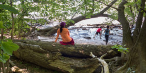 Looking for the Best-Kept Secrets in D.C.? Take a Hike