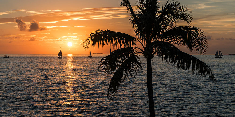 Key West Sunset Celebration